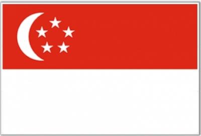 В Сингапуре стартуют продажи PS Vita 3G